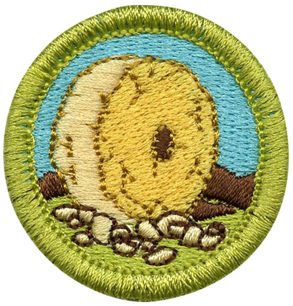 Boy Scouts Inventing Merit Badge Class